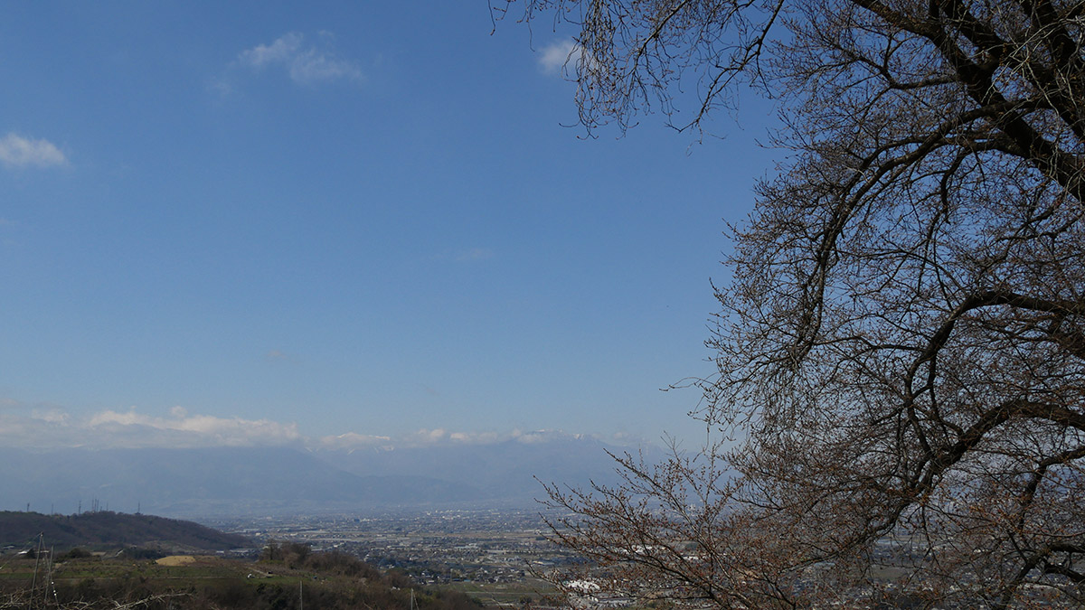 20160322_sakura_furusato006.jpg