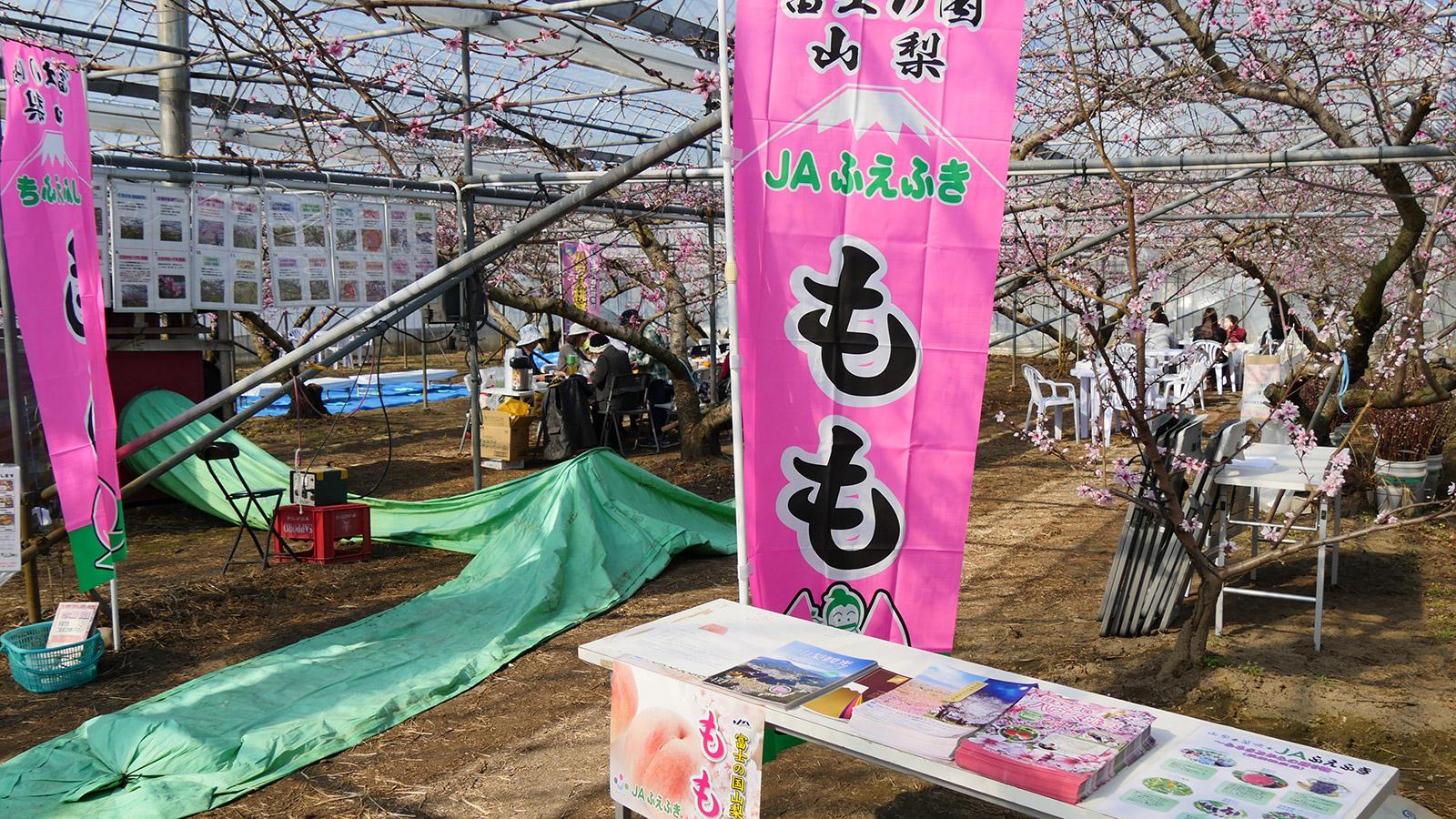 受付はJAふえふき・富士見農産物直売所です。