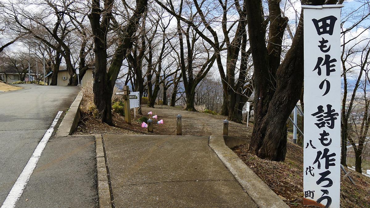 ふるさと公園下部の桜の回廊