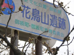 2017hanatoriyama_0402_001