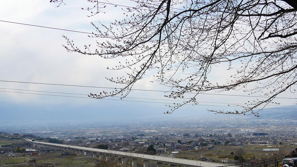 2017hanatoriyama_0402_011