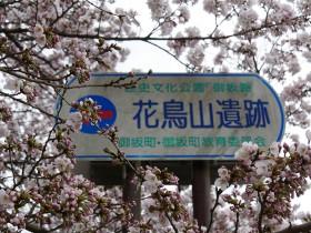 2017hanatoriyama_0408_001