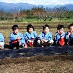 平成29年10月30日(月)あさま保育園児たちが甲斐国分寺跡にチューリップ(球根)植栽のお手伝いに来てくれました。