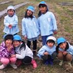 11月8日(水)御坂東保育所の園児たちと一緒にチューリップの球根植えをしました。